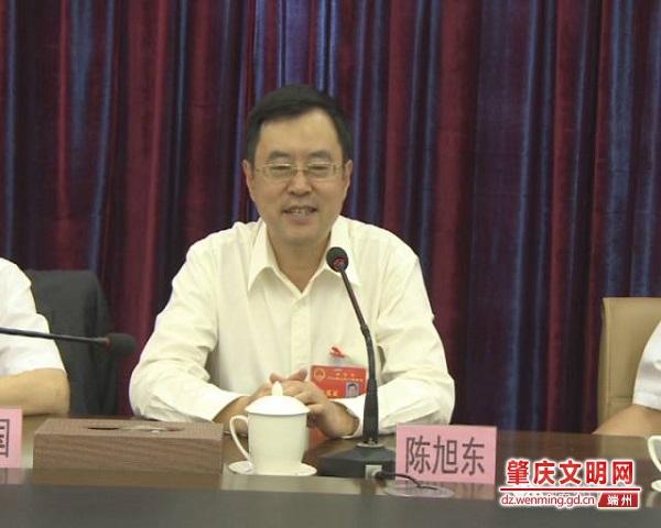 陈旭东当选肇庆市长为端州建言