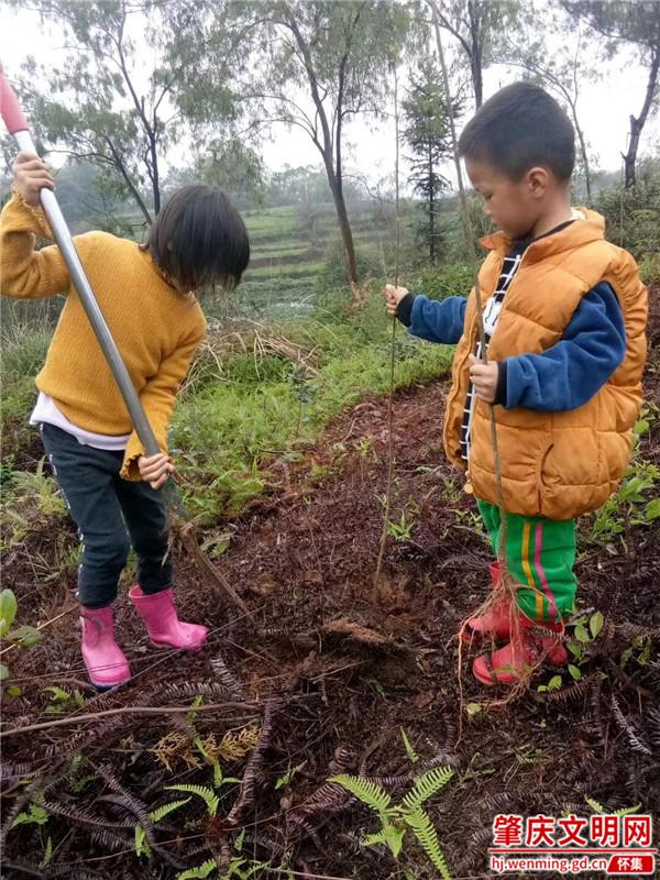 怀集连麦镇:大人小孩齐为家园增添一片绿