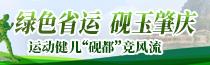 广东省第十五届运动会